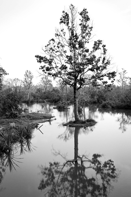 Cambodia24.jpg