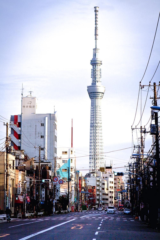 Japan21.jpg