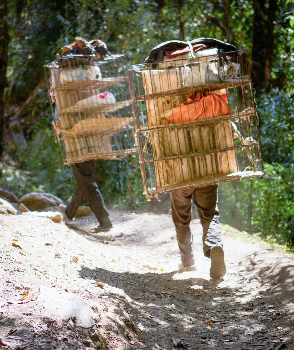 7_Nepal.jpg