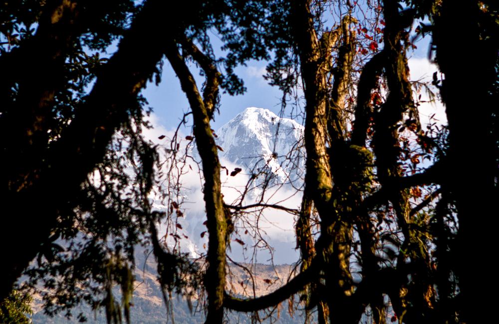 11_Nepal.jpg