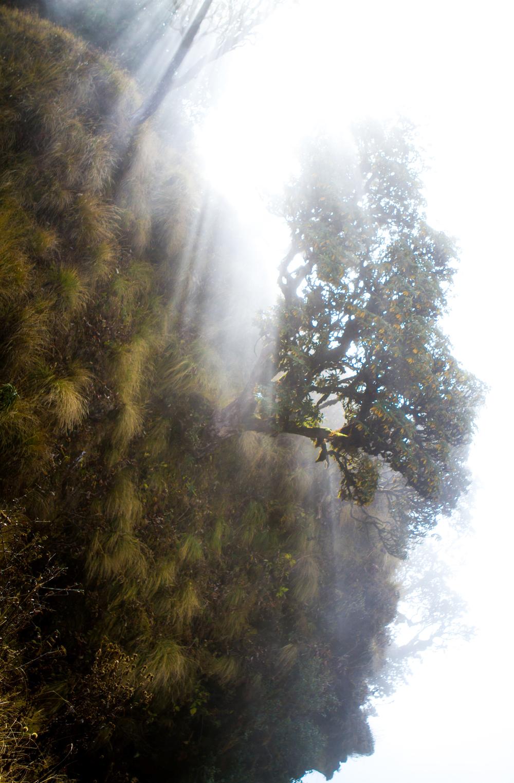 16_Nepal.jpg