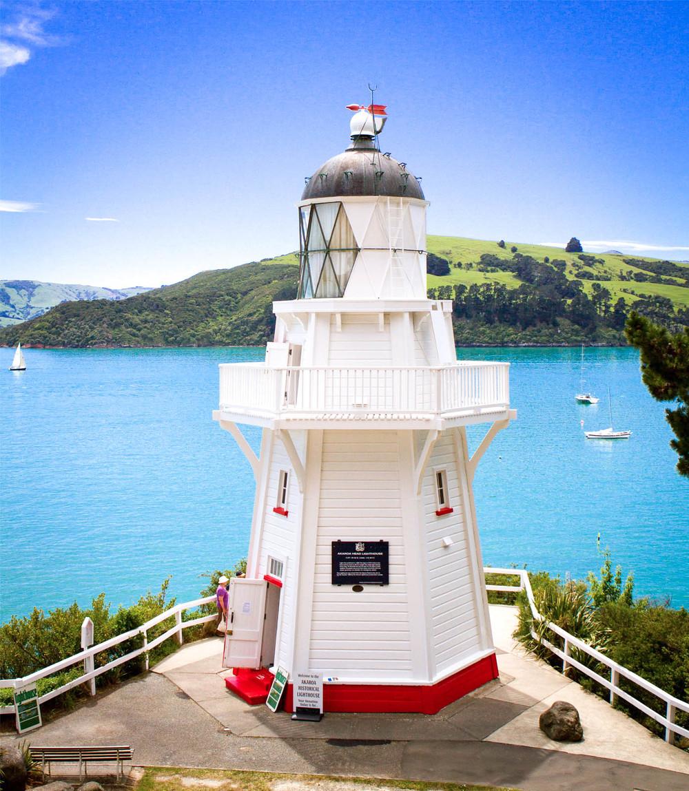 NZ5.jpg