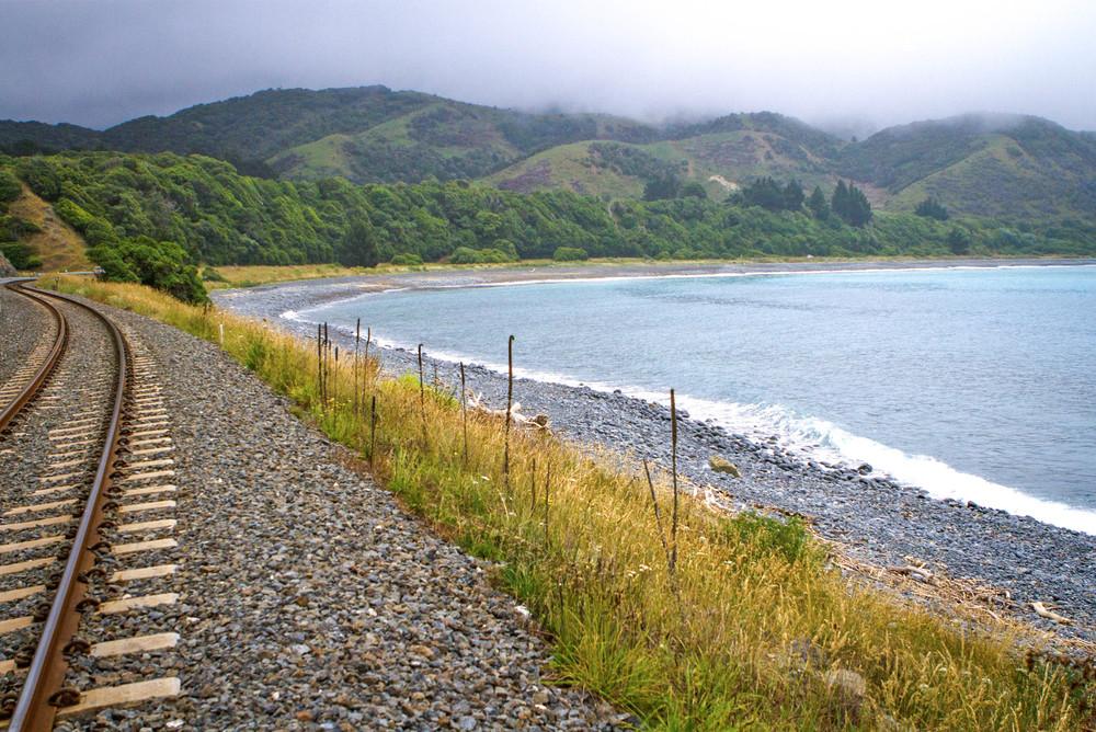 NZ9.jpg