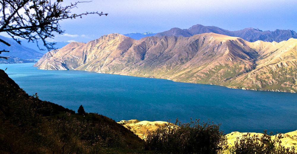 NZ26.jpg