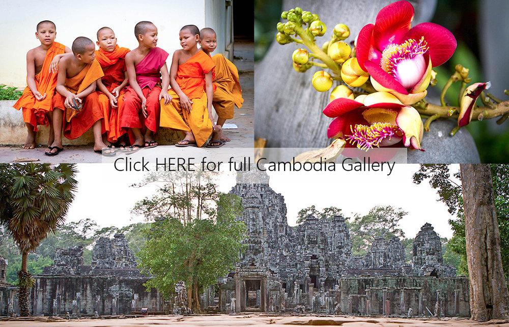 Cambodia Cover Photo.jpg