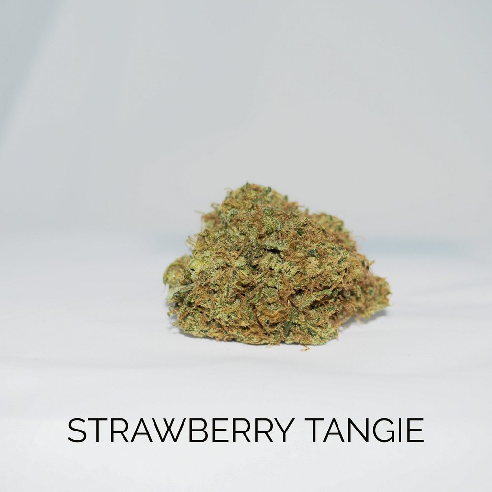 New Life - Strawberry Tangie