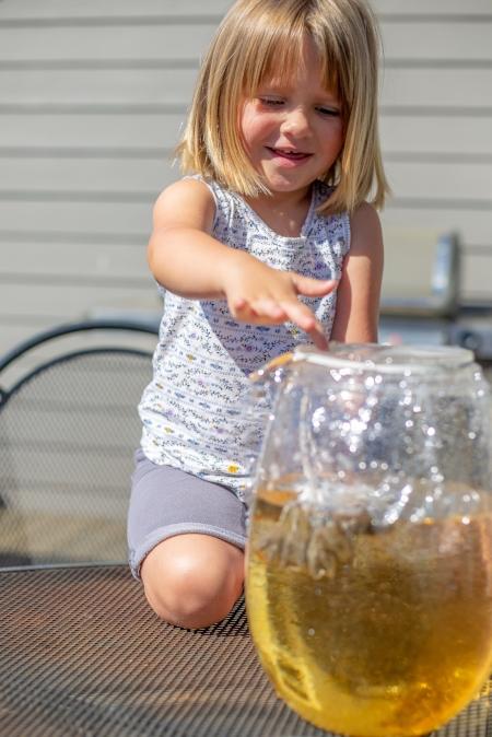 Lucy sun tea-5.jpg