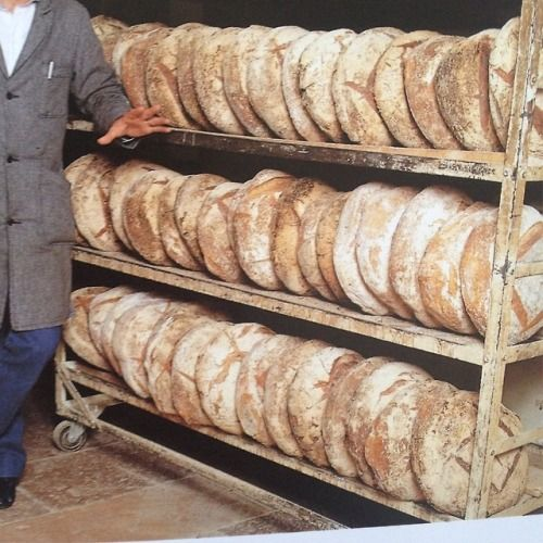 Loaves in waiting, Image Source Unknown