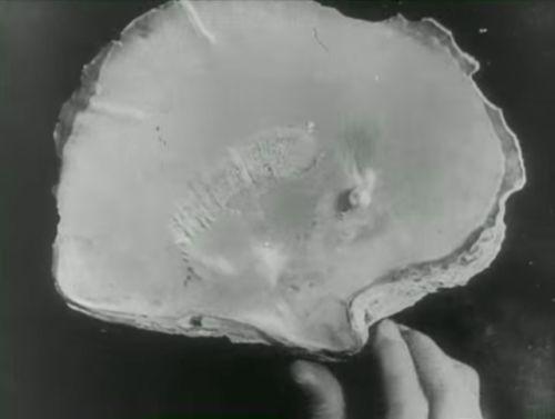 """Henri D'Ursel's surrealist """"La perle"""" (1929)"""