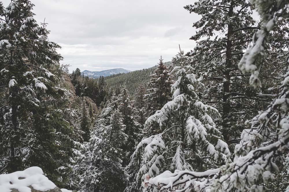 Colorado Springs Hike