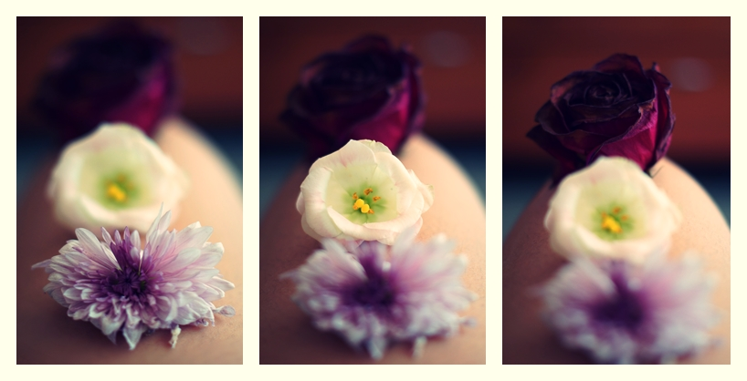 Photo By Flickr User: Raquel bascuñana