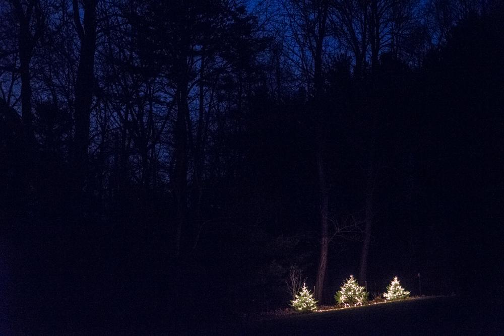 2016 New Year's Eve (c)My3GirlsPhotography-5.jpg