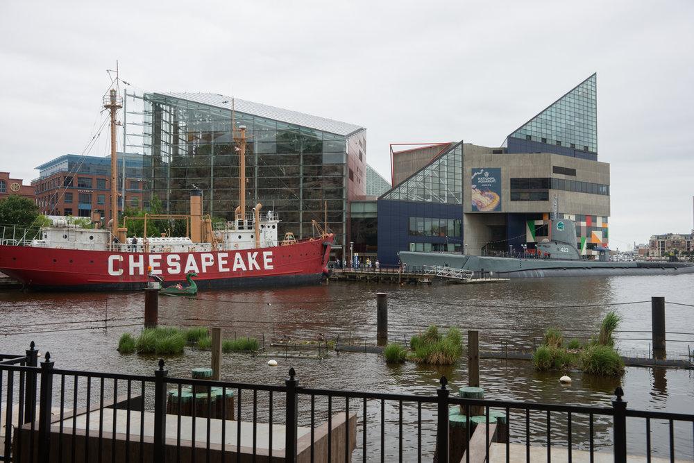 Baltimore Inner Harbor and National Aquarium (c) My3GirlsPhotography May 2017-1.jpg