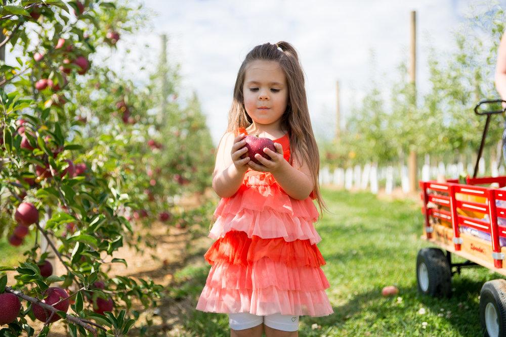 Grim's Orchard Annabelle 10.4.14-22.jpg