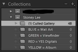 How my collections are set out for every client. I sell digitals a la cart so any images they say yes to are marked RED