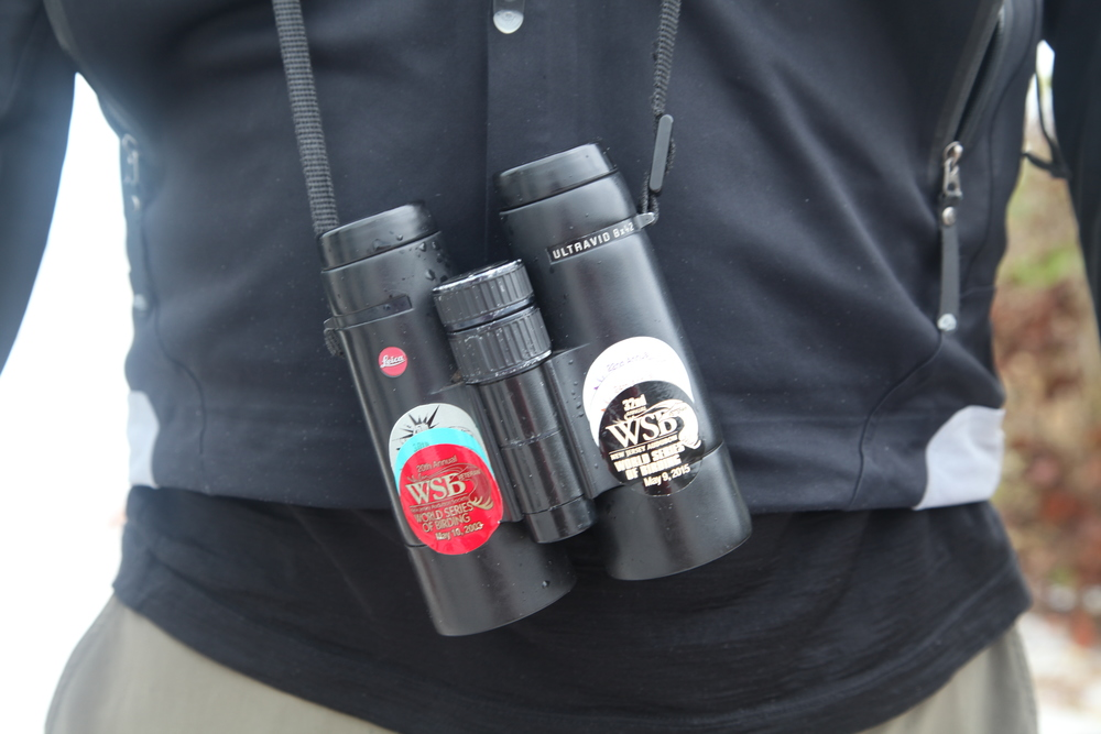 A seasoned pair of Leica binoculars. Despite not being in perfect focus, I'm sharing this shot as a reminder that all photographs aren't perfect- it's up to the photographer to master the settings and composition to orchestrate a perfect shot.