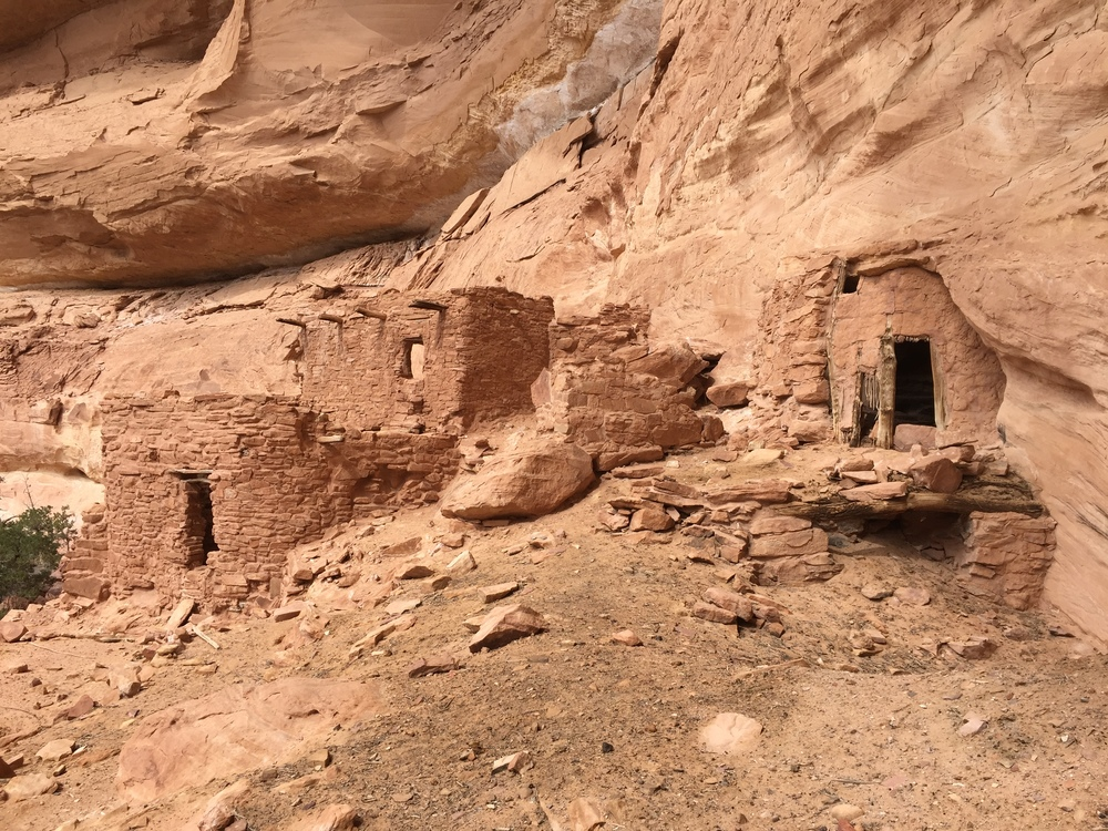 Ancestral Puebloan cliff dwellings in Grand Gulch, UT