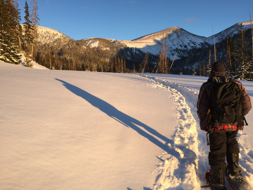 Following a snowshoe trail at a lower elevation.
