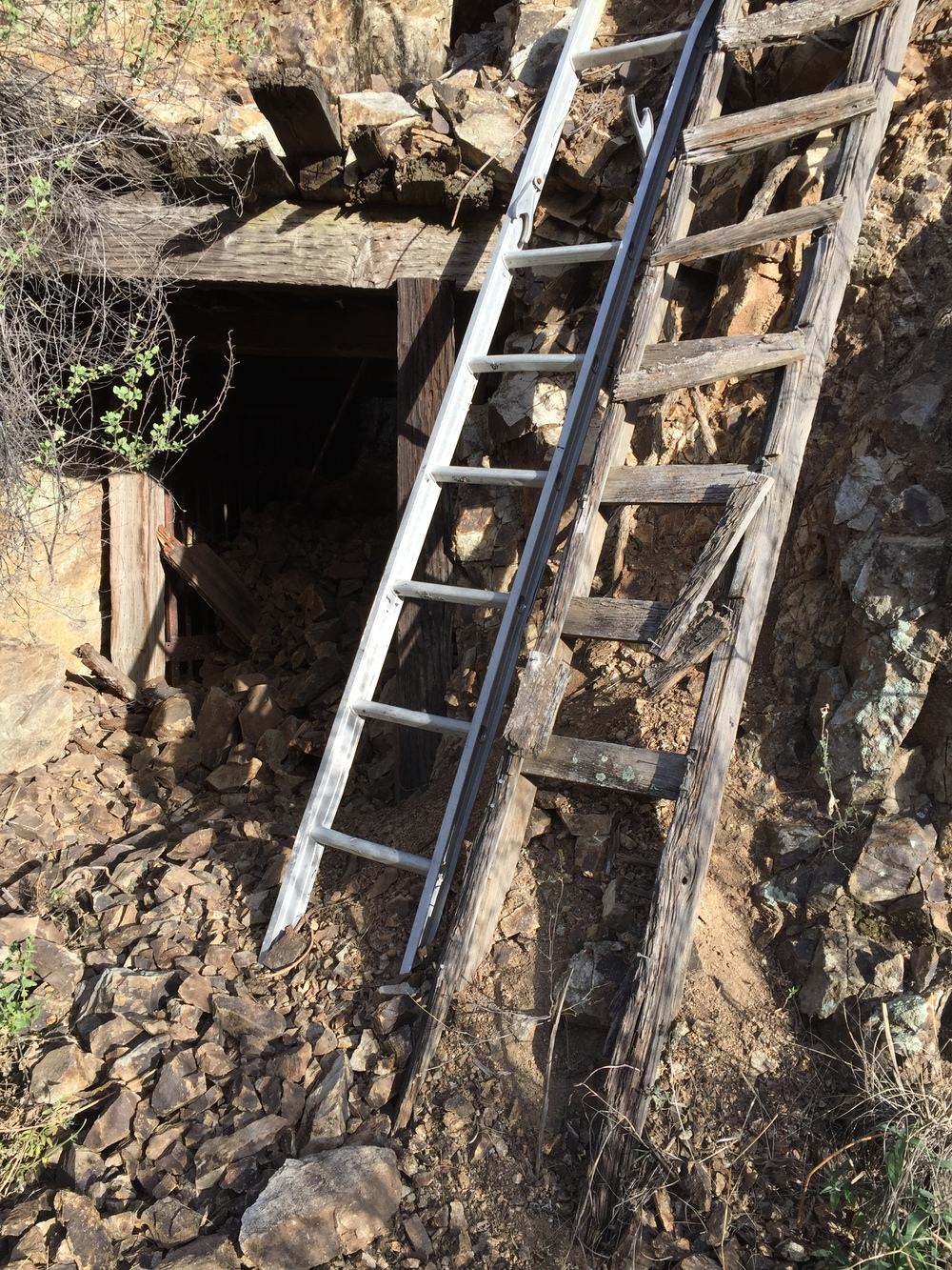 Cool! A ladder! Maybe I'll climb up and see what cool things are inside the mine shaft...