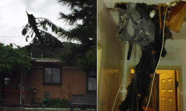 Tree branch falls through roof in northern Orange County.