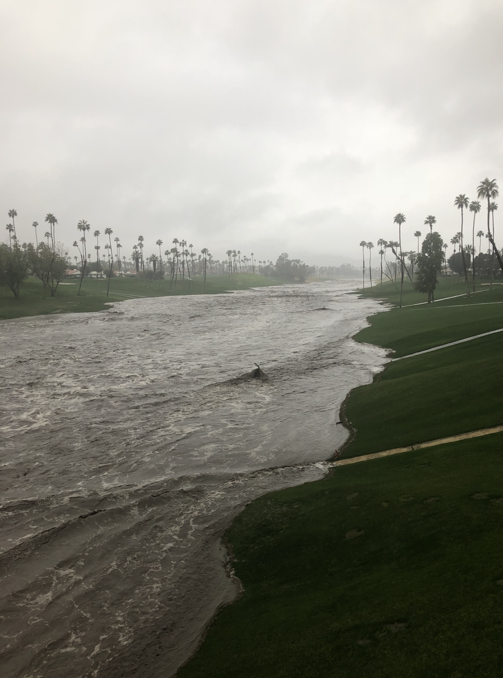 Whitewater River in Palm Desert at Monterey Rd.