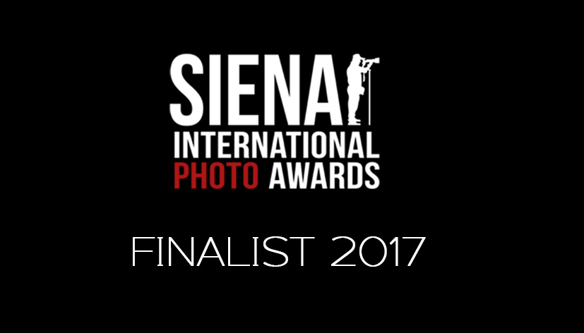 SienaFinalist--Logo_2017.jpg
