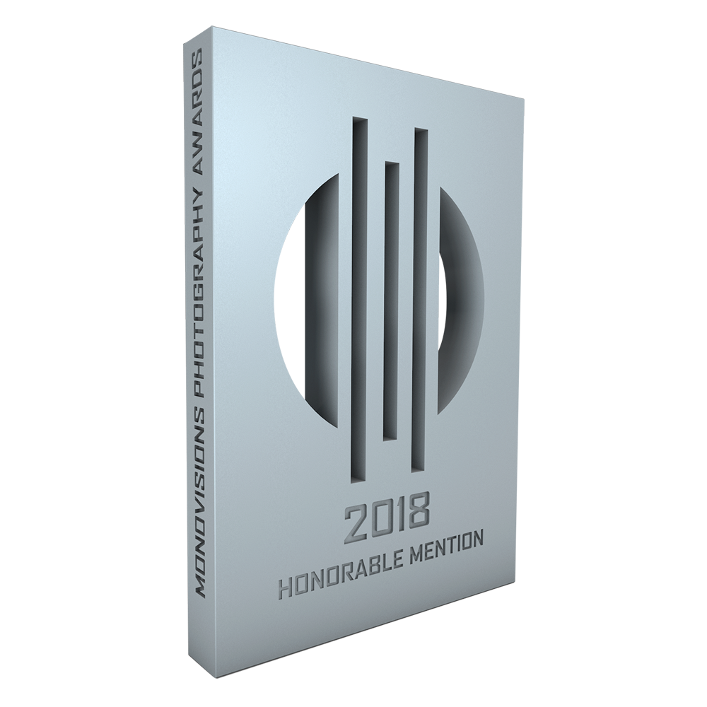 monovisions_awards_2018_hm.png