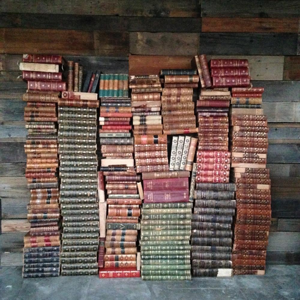 Vintage Books $1ea