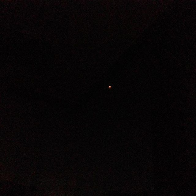 Tiny tiny speck of a moon I just found in my phone. I don't remember taking this