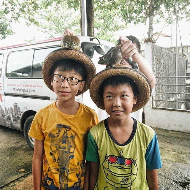 Is there something on my head? @jurongfrogfarm #sgfarming #sgyoungfarmers #farmsinsingapore #exploresingapore #farms