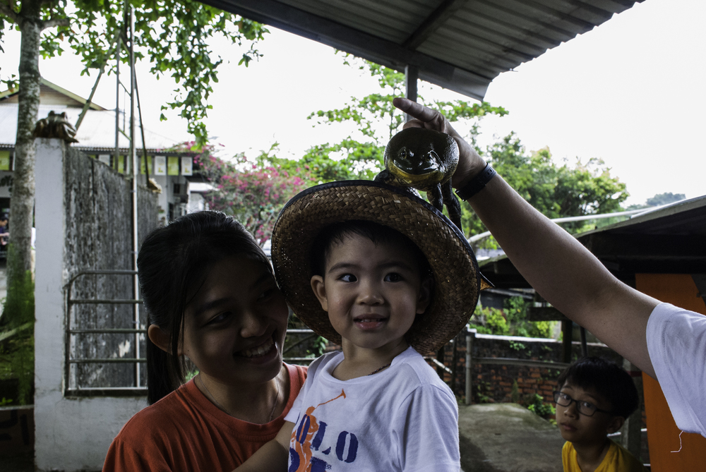 jurongfrogfarm-13.jpg