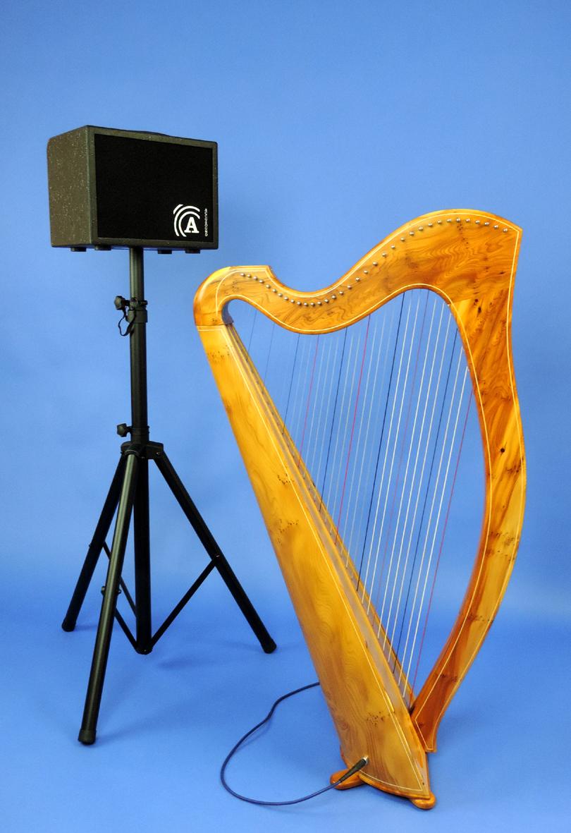 Harp Amp 002 medium.jpg