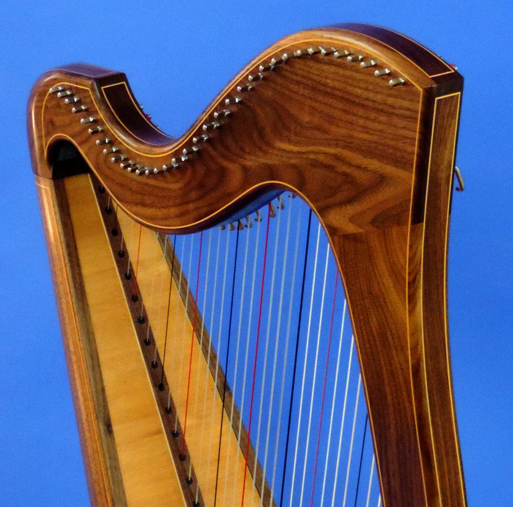 AA Jenny Harp 008 Square.jpg