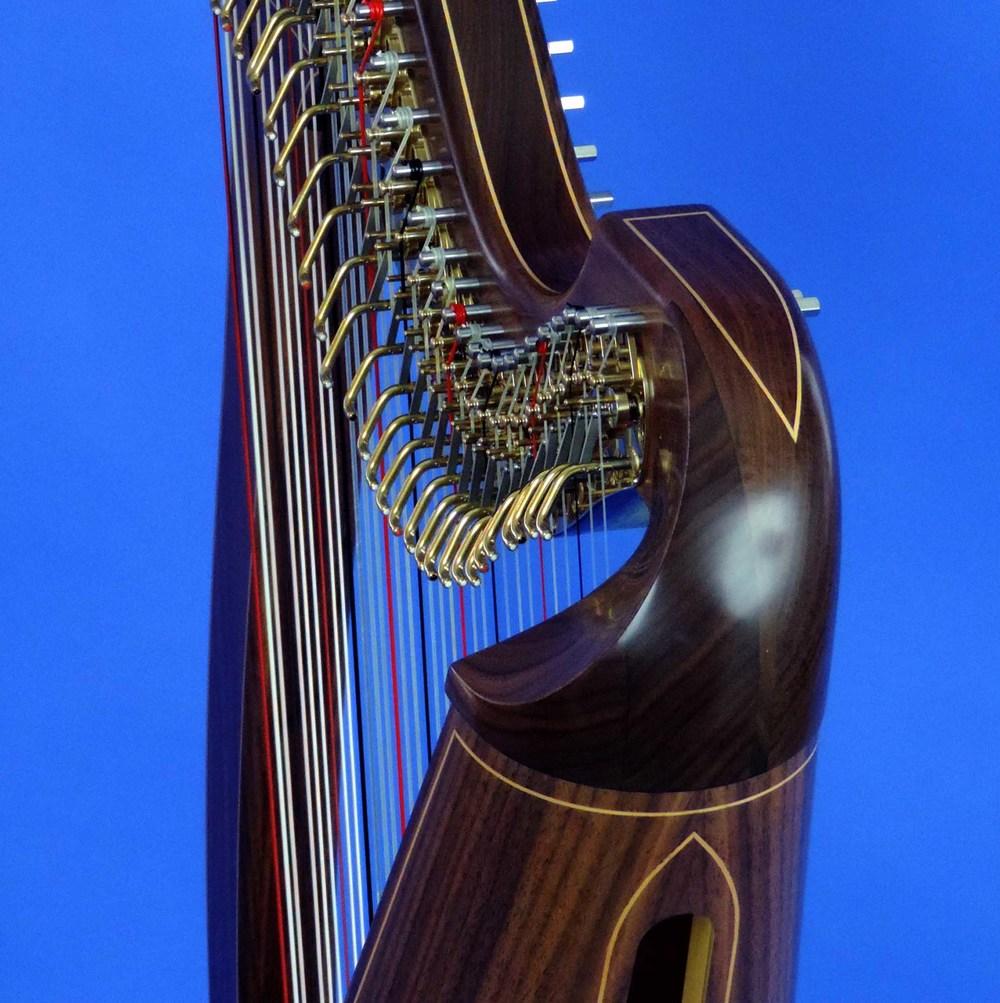 AA Jenny Harp 006 Square.jpg