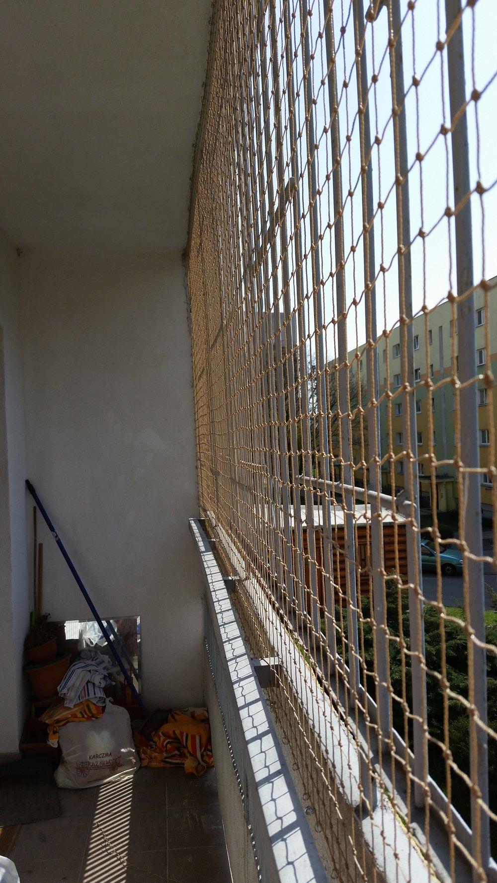 zabezpieczenie balkonu przed ptakami