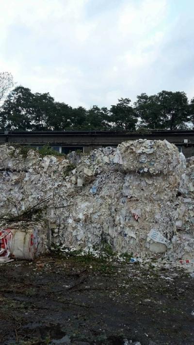 Sprzątanie po wycince drzew Łódź