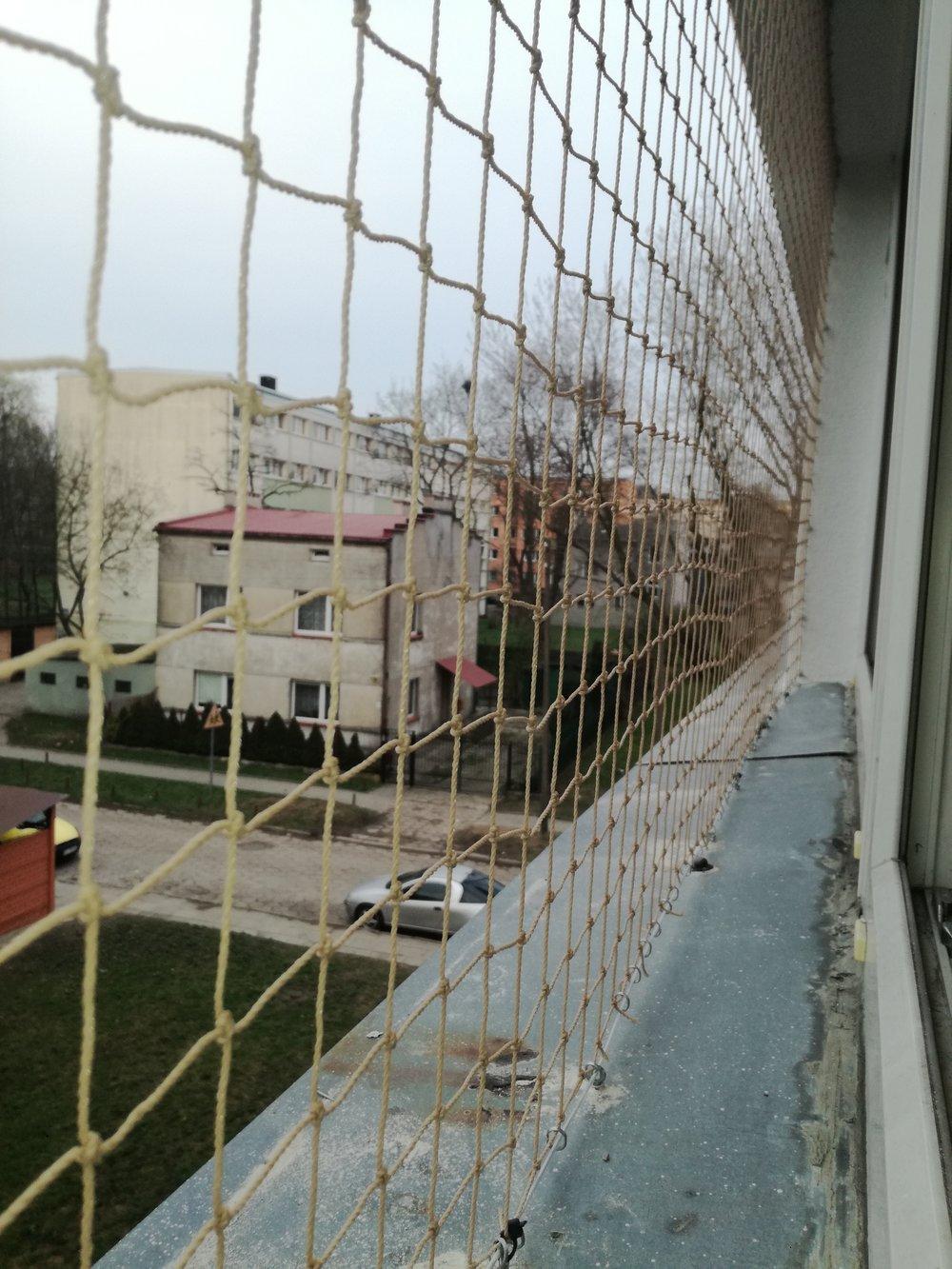 kocia siatka na okno Łódź