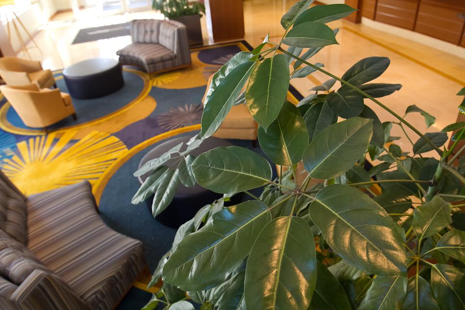 Georgia Tech Conference Center Photographs