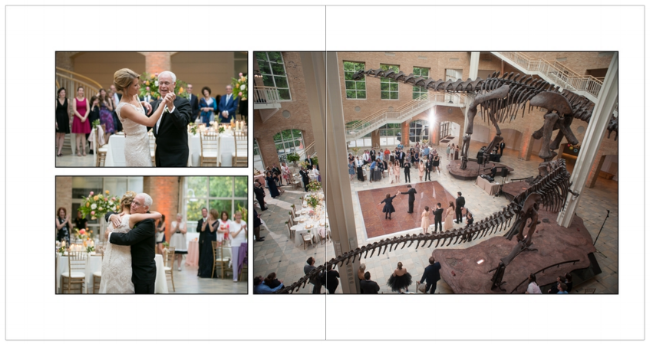 album spread from Liz and jon's fernbank center reception.