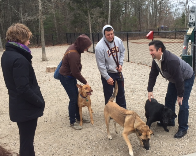The Falmouth Dog Park was a great place to meet fellow dog lovers today on the campaign!