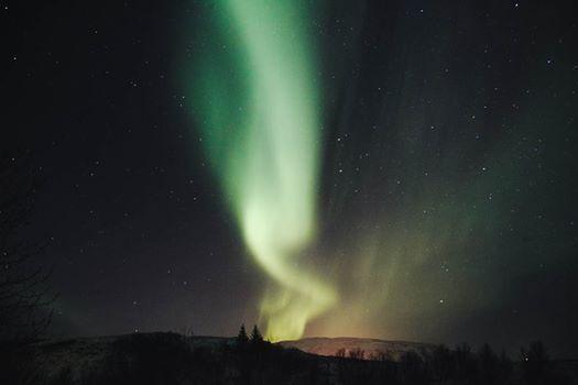 Photo: Freya McOmish, Scandinavia Standard