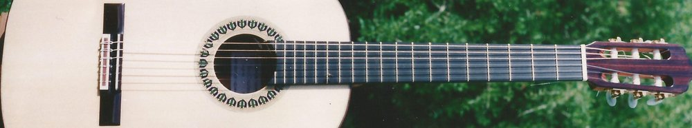 Roy Courtnall's Lincoln Minster model concert guitar