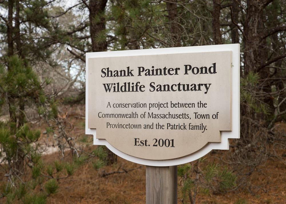 Shank Painter Pond