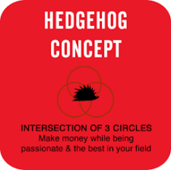Hedgehog concept