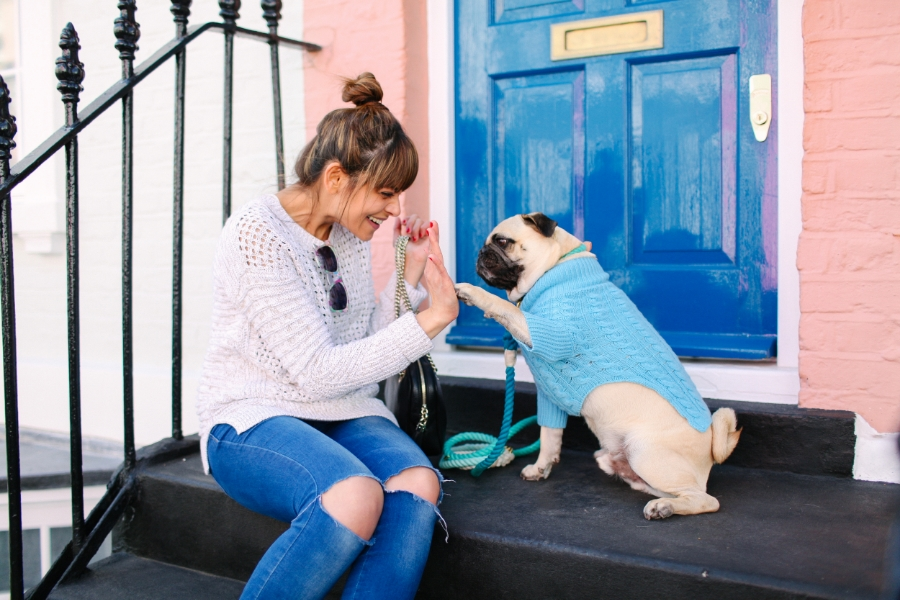 honeyidressedthepug-chelsea-london-pug-puglife-pugfashion-dog-dogfashion-humanandhound-rubyrufus-cashmere-gucci-zerouv-foundmyanimal-pastels-spring-fashion-style-streetstyle-petfashion-fashionblogger-dogtag-barksandbijoux-meandmydog-dogsinclothes