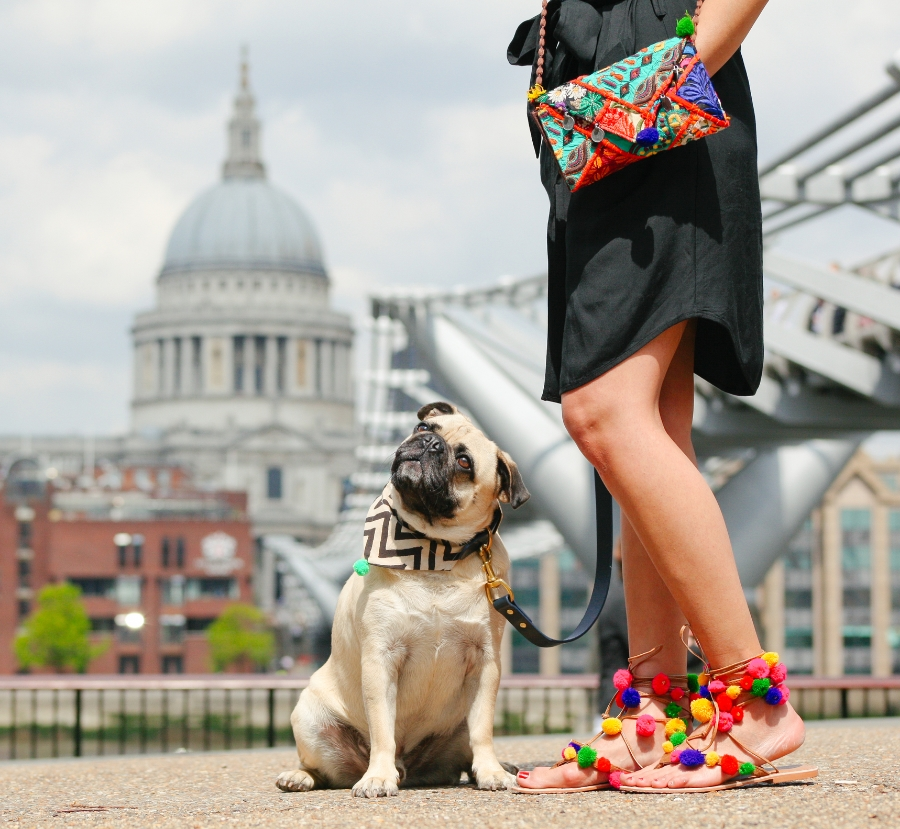 dogfashionblog-petfashionblog-london-honeyidressedthepug-humanandhound-petfashion-puglife-pugswag-coolpups-dog-dogfashion-london-southbank-ampersand-ariandi-fetchandfollow-pompom-trend-asos-pompomsandals-ethnic-bandana-pugsofinstagram