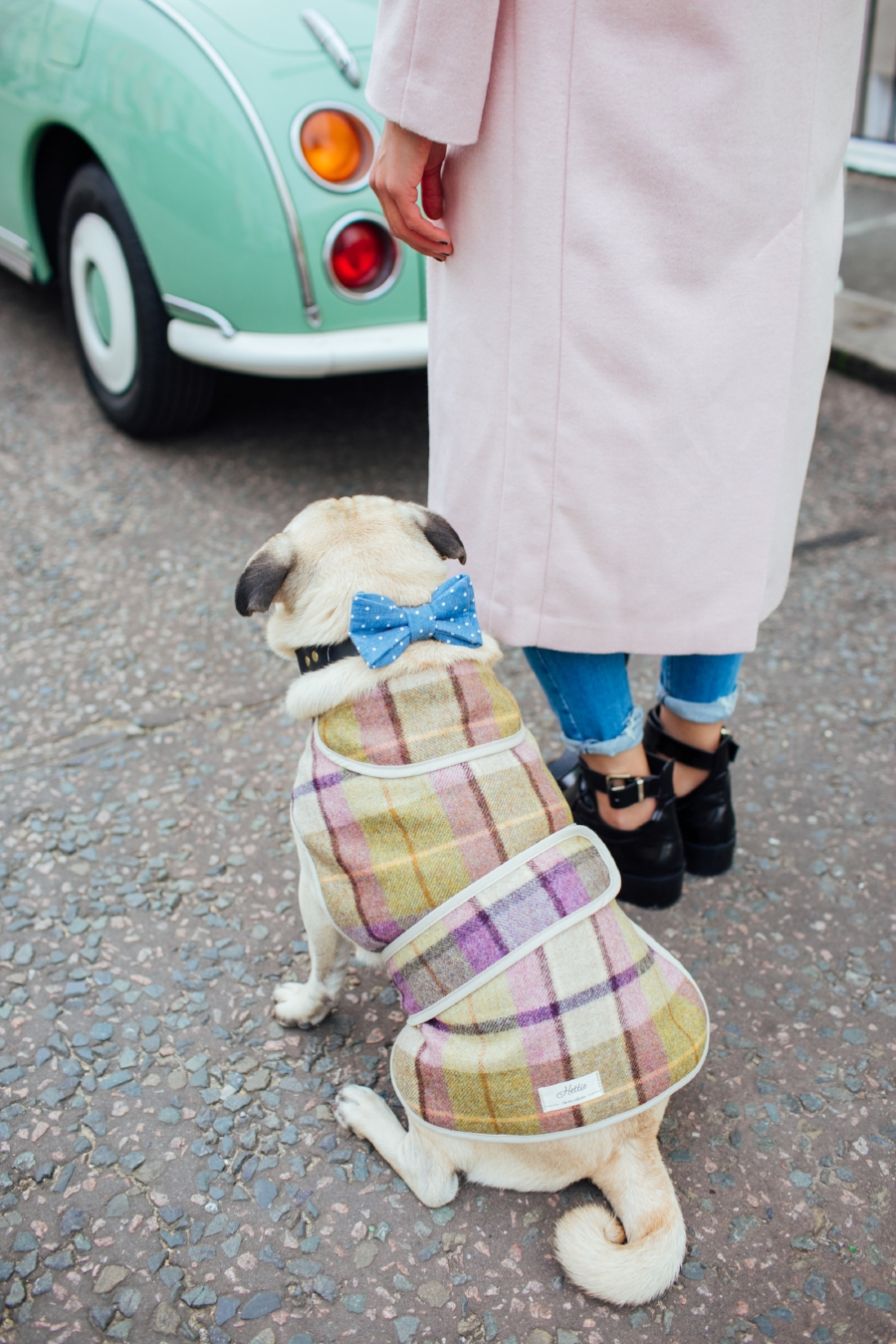 dogblog-london-bestdogbloginlondon-dogfashion-dogfashionblog-fashionandlifestyle-streetstyle-pugswag-humanandhound-pink-fallfashion-falltrends-dogsinclothes-dapperdogs-pug-puglife-bestdressedpug-fashionblogger-newyork-uk-pinkwintercoat-puglife-twinning-bestdressedpug-awesome-best-bestdogbloglondon-dogfashionlondon-coolestdogblog-cooldogs-vintagecar-mint  -topdogbloglondon-bestdogblog