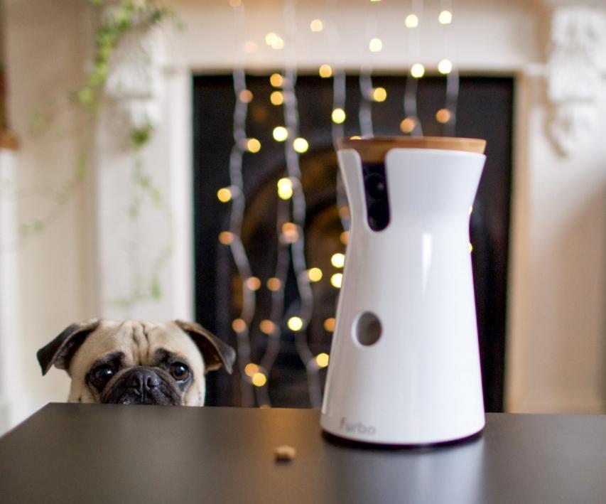 furbo-doggycamera-petcamera-treattossingdoggycamera-petlifestyle-petfashionblog-dogblog-topdogblog-bestdogblog-london-humanandhound-christmasgift-dogfashionblog-bestdogbloglondon-moderndogproducts-dogloversblog-coolgift-pettechnology-petblogger