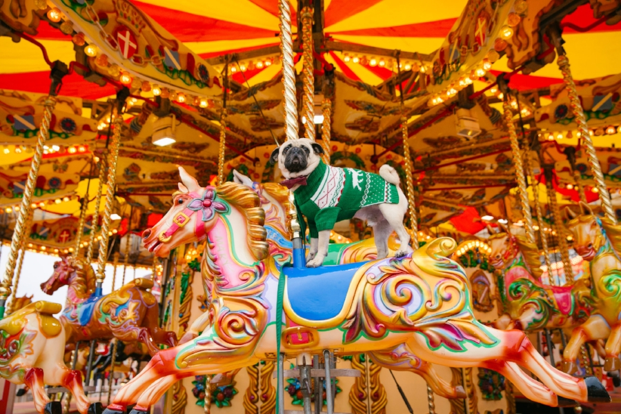 dogblog-bestdogblog-topdogblog-dohfashionblog-petblog-petfashionblog-dogbloglondon-humanandhound-cutepug-dogsinclothes-pugwearingclothes-petblogger-christmas-hydepark-winterwonderland-christmas2016-london-carousel-christmasjumpers-festive-newyear -  bestdogbloglondon