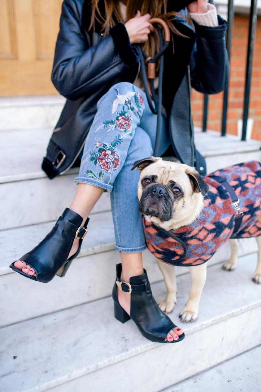 humanandhoundfashion-dogfashionblog-dogfashion-petfashionblog-petfashion-dogsinclothes-london-chelsea-londondoors-twinning-personalstyle-bestdogbloglondon-topdogblog-bestdogblog-bohemianstyle-embroideredjeans-dogjacket-peeptoeboots-londonstreetstyle-londonblogger-uk-lifestyleblog-dogfriendly-dogfriendlyblog